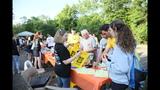 Hundreds attend Miles Against Melanoma 5K PA… - (17/25)