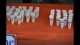 Hundreds attend Miles Against Melanoma 5K PA… - (13/25)