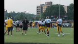 Steelers night practice draws thousands to… - (9/25)