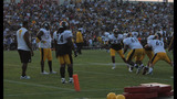 Steelers night practice draws thousands to… - (23/25)