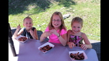 Photos: Pittsburgh's Best Ribs Contest… - (7/25)