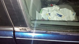 Photos: Monroeville car vandalism - (1/4)