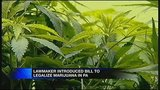 Pa. lawmaker reintroducing marijuana legislation_3104039
