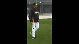 Photos: 2013 Pittsburgh Pirates Spring… - (7/25)