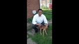 Family caring for tiny fawn after backyard discovery - (1/10)