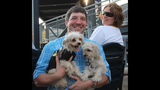 Pups pack PNC Park - (15/25)