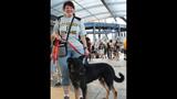 Pups pack PNC Park - (2/25)