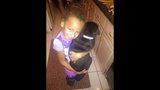 Photos: 1-year-old black lab Tyson - (1/13)
