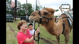 PHOTOS: Big Butler Fair 2013 - (14/25)