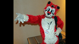 'Furries' return to Pittsburgh for 2013… - (8/25)