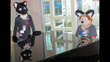 'Furries' return to Pittsburgh for 2013… - (19/25)
