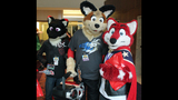 Furries gather for Anthrocon _3610654