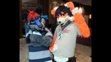 'Furries' return to Pittsburgh for 2013… - (22/25)
