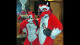 'Furries' return to Pittsburgh for 2013… - (10/25)