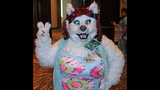 'Furries' return to Pittsburgh for 2013… - (11/25)