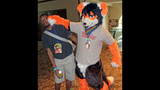 'Furries' return to Pittsburgh for 2013… - (24/25)