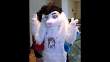 'Furries' return to Pittsburgh for 2013… - (13/25)