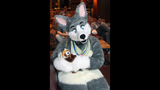 'Furries' return to Pittsburgh for 2013… - (21/25)
