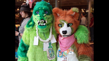 'Furries' return to Pittsburgh for 2013… - (17/25)