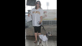Pirates host Pup Night at PNC Park - (19/25)