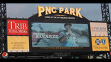 Pirates host Pup Night at PNC Park - (25/25)