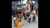 Pirates host Pup Night at PNC Park - (12/25)
