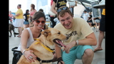 Pirates host Pup Night at PNC Park - (24/25)