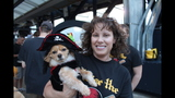Pirates host Pup Night at PNC Park - (10/25)