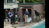 Sea lions, lemurs at Pittsburgh Zoo - (4/25)