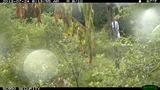 Police hidden camera photos of Moon indecent… - (6/13)
