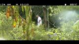 Police hidden camera photos of Moon indecent… - (10/13)