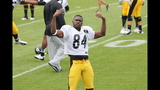 July 31: Steelers Training Camp at St.… - (5/25)