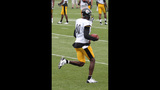 July 31: Steelers Training Camp at St.… - (7/25)