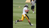 July 31: Steelers Training Camp at St.… - (14/25)