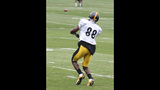 July 31: Steelers Training Camp at St.… - (11/25)
