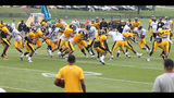 July 31: Steelers Training Camp at St.… - (1/25)