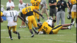 July 31: Steelers Training Camp at St.… - (8/25)