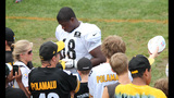 August 2: Steelers Training Camp at St.… - (7/25)