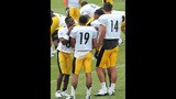 August 2: Steelers Training Camp at St.… - (23/25)