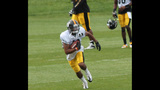 August 2: Steelers Training Camp at St.… - (13/25)