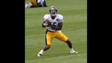 August 2: Steelers Training Camp at St.… - (22/25)