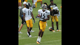 August 2: Steelers Training Camp at St.… - (12/25)