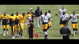 August 7: Steelers Training Camp at St.… - (25/25)