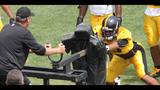 August 7: Steelers Training Camp at St.… - (11/25)