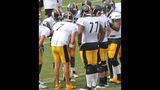 August 7: Steelers Training Camp at St.… - (17/25)