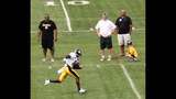 August 7: Steelers Training Camp at St.… - (5/25)