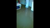 Photos: West Mifflin family's home flooded… - (2/6)