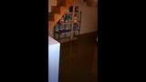 Photos: West Mifflin family's home flooded… - (4/6)