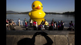 World traveling 40-foot rubber duck making… - (11/20)