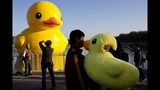 World traveling 40-foot rubber duck making… - (12/20)